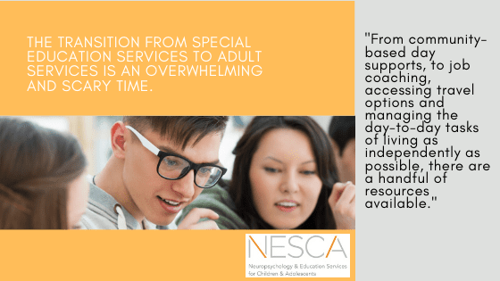Preparing for the Transition from Special Education to Adult Services