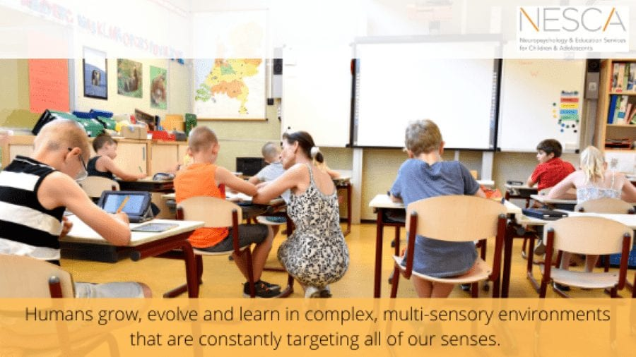 Multi-sensory Learning: More than Just a Buzz Word!
