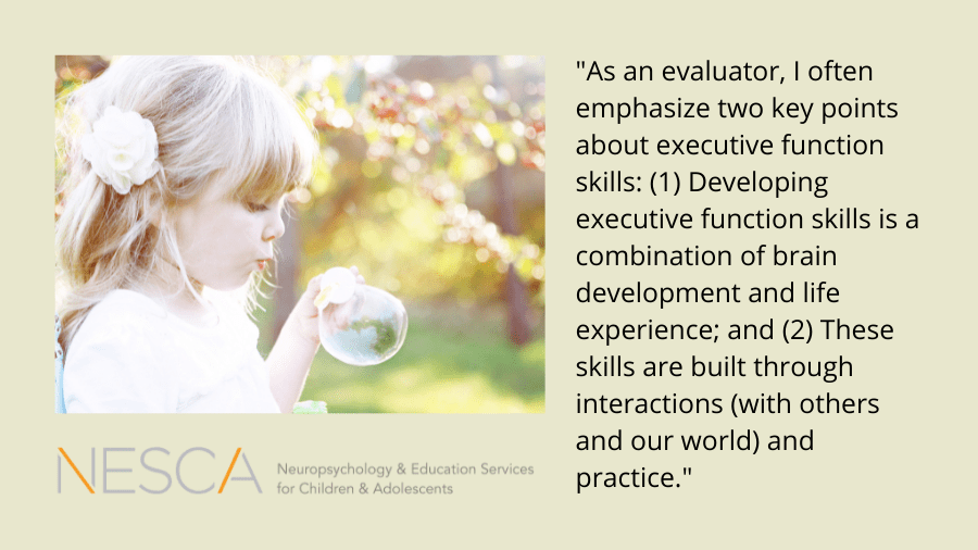 Executive Function Skills in the Outdoors